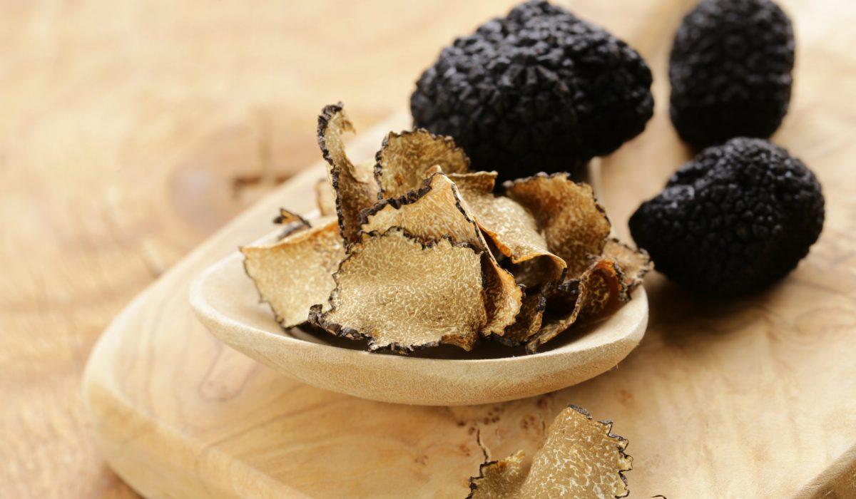 Istra Transfer truffle hunt