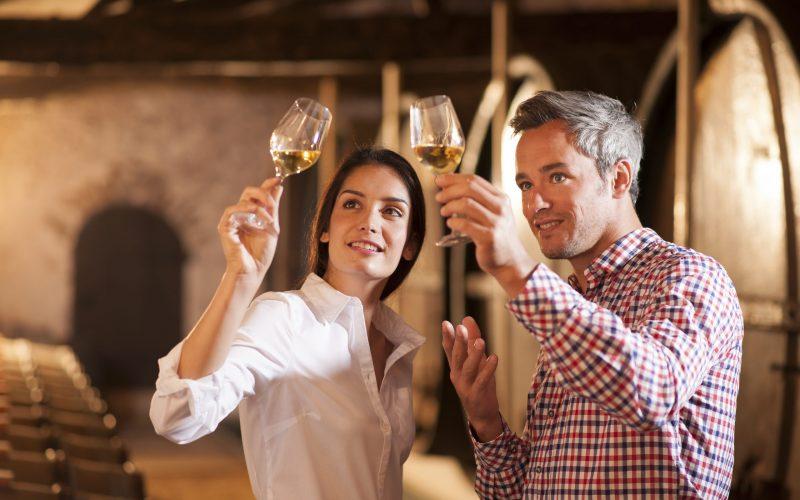 Istra Transfer wine tasting